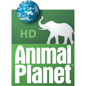 Watch Animal Planet outside the US